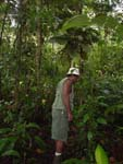 My guide in the jungle (seeking little frogs), Costarica